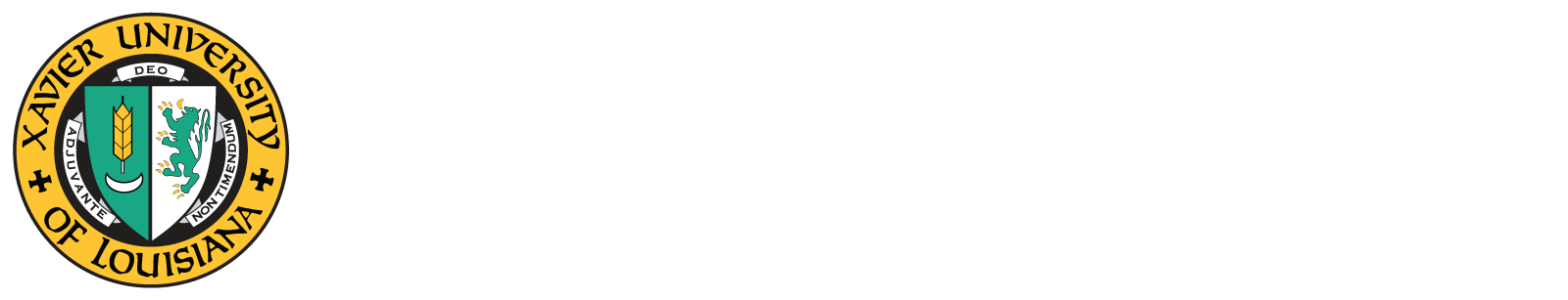 13th Health Dispariites Conference